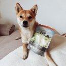 Bellfor Vermal-Pulver 250 g