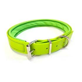 Biothane Halsband grün / Neopren unterlegt